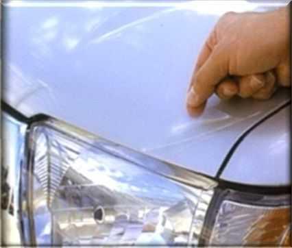 Дефекты лакокрасочного покрытия часто вызывают насекомые и их экскременты